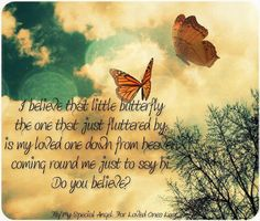 <3 <3 I say hi to Maddie whenever a butterfly passes me because I know its her.