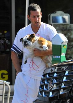 Adam Sandler paid an LA parking meter alongside his pet Bulldog Matzoball in September 2012.