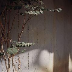 Amihai Melki, Rehovot, 2010 Crédit Photographique : Amihai Melki