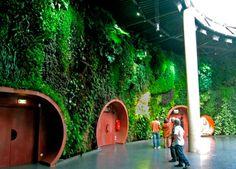 Lista: 10 jardins verticais mais bonitos do mundo - Casa