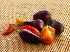 Scharfe Dinger aus dem eigenen Garten Stuffed Peppers, Vegetables, Food, Food And Drinks, Cooking, Lawn And Garden, Stuffed Pepper, Essen, Vegetable Recipes