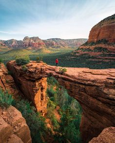 Amazing views in Sedona! West Texas, Wyoming, Zion National Park, National Parks, New Mexico, Colorado, Forest View, Oregon, Amsterdam