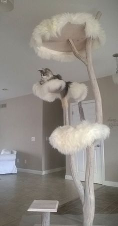 Would be easy to adapt current cat tree with fluffy mats. Home Catinista Luxury Pet Designs Cat Furniture Crazy Cat Lady, Crazy Cats, I Love Cats, Cool Cats, Cool Cat Trees, Gatos Cats, Cat Room, Pet Furniture, Modern Furniture