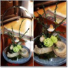 Chez Marlies Geniessen mit den Jahreszeiten: Blumen und Garten