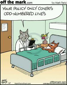 Ideas medical humor cartoons funny for 2019 Funny Cartoons, Funny Cats, Funny Animals, Funny Comics, Funny Shit, Funny Humor, Hr Humor, Dog Funnies, Friday Funnies