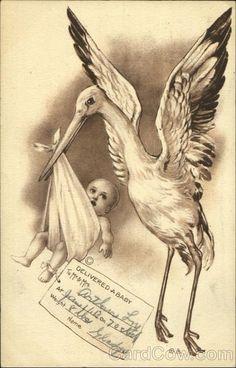 Stork Birth Announcement Babies