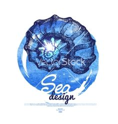 Seashell banner sea nautical design vector 2662447 - by pimonova on VectorStock®