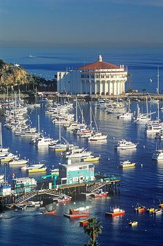 Catalina Island vote #11 of the 14 Underrated Places You'll Really Want To Move To….this view is from the point…ahhh Catalina