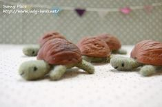 Het dierenwinkeltje - schildpad