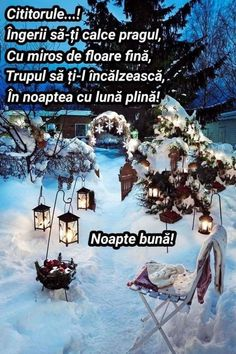 Good Night, Christmas Tree, Holiday Decor, Prague, Calculus, Nighty Night, Teal Christmas Tree, Xmas Trees, Xmas Tree
