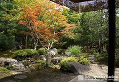 Nishimura-ke and Umetsuji-ke, Sha-ke 社家住宅, shinto priest houses with secret gardens | Real Japanese Gardens