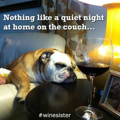 Nothin' like a quiet night at home on the couch. #winesister