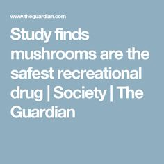 Study finds mushrooms are the safest recreational drug | Society | The Guardian