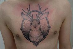 // jackalope by taiom, via Flickr //// his little face is so cute!