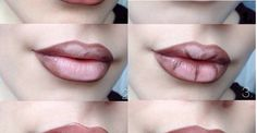 FL | Brown & Nude Ombre Lips