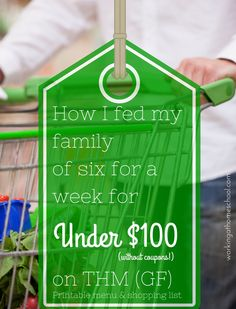 Cheap Healthy Meal Plan for Trim Healthy Mama - how I fed my family of six for a week for under $100!