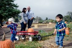 I followed this family of four (soon to be five!) around the pumpkin patch at Mountain Valley Vineyard in Ramona for a fun family photo shoot. The two year old twins were delighted to have their very own wagon to hold their pumpkins. Mom and Dad laughed at their antics, and later joked that mom had a pumpkin under her sweater.  Pumpkin Patch Family Photos in Ramona, CA 92065 - San Diego Fall Family Pictures
