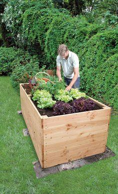 hochbeet aus steinen google suche garden pinterest garten and gardens. Black Bedroom Furniture Sets. Home Design Ideas