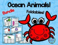 Ocean Animals Bundle:  Have your children research their favorite ocean animal!Buy the bundle and save 25%! This product includes three ways for your children to share what they have learned about their ocean animal.7 Insect Products Included:Fish Octopus