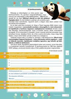 Szövegértést fejlesztő gyakorlatok 3.o. Benjamin Franklin, Education, Reading, School, Minden, Sony, Printables, Languages, Print Templates