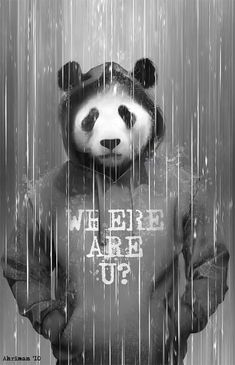 Cute Panda Wallpaper For Android Cute Panda Wallpaper, Panda Wallpapers, Panda Art, Panda Love, Animals And Pets, Illustration, Cool Art, Graffiti, Anime