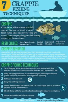 Looking for effective crappie fishing techniques? Check out this post with an awesome infographic that you will find nowhere else! Catch your limit every time! Crappie Fishing Tips, Carp Fishing, Best Fishing, Trout Fishing, Saltwater Fishing, Kayak Fishing, Fishing Boats, Fishing Tackle, Fishing Tricks
