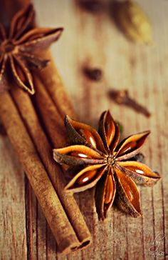 Star Anise With My Lens In 2019 Food Photography Fruit Photography, Food Photography Styling, Creative Photography, Leaf Vegetable, Cinnamon Spice, Cinnamon Cake, Kitchen Herbs, Brown Aesthetic, Herbs