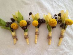 yellow diy australian natives boutonnières made with billy buttons and gum-nuts we picked up from our trip to the aussie bush.