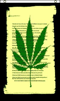 Stoner Raiders Skull Pot Weed Leaf Green Marijuana 3x5 Polyester Flag