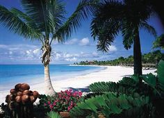 Private Island in the Caribbean, a dream honeymoon vacation destination
