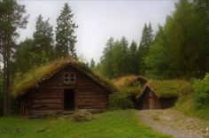 earth home - bermed and grass roof rural cabin-style home
