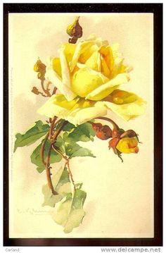 7 das Artes: Catherine Klein artista das flores!