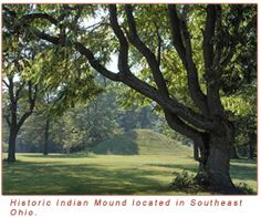 delaware indians - Google Search Architecture Courtyard, Landscape Architecture, Hopewell Culture, Delaware Indians, Mound Builders, Faraway Tree, Water Pond, Ohio River, Shade Trees