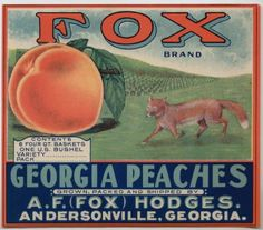 Fruit crate label art: vintage peach crate labels - all for Georgia peaches :)