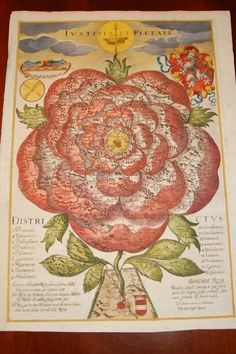 Rose of Bohemia. With Justice and Piety, reads the Latin emblazoning this 17th-century illustration, a map that shows Bohemia as a stylised rose.  It shows the 18 administrative subdivisions of Bohemia, starting with the Districtus pragensis (i.e. Prague) at the centre. Leaves peeking out from the actual flower indicate neighbouring regions: Palatinatus bavariae pars (Bavarian palatinate), Austriae pars (Austria), Moraviae pars (Moravia) and Silesiae pars (Silesia) – some are illegible