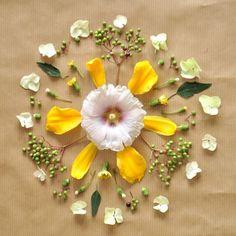 Creat a flower mandala like this one.  Nini's Flower Mandala