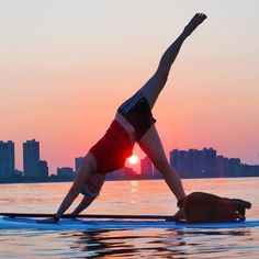 175 Best Paddle Fitness Images On Pinterest Paddle Board