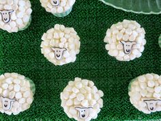 Sheep cupcakes!