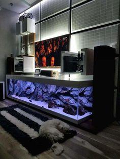 TV Stand Aquarium #AquariumTanksIdeas