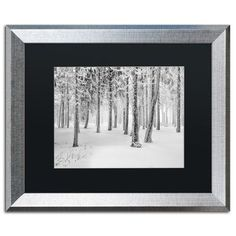 "Trademark Art ""Frozen World"" by Philippe Sainte-Laudy Framed Photographic Print Size: 1"
