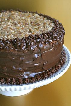 amazing german chocolate cake - light, sophisticated, just the right amount of sweetness...