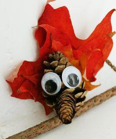 fall nature craft for kids: pinecone bird tutorial