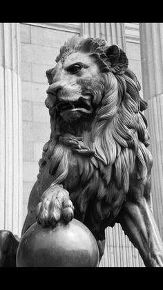 Lion statue outside congress Madrid. Statue Tattoo, Animal Sculptures, Lion Sculpture, Garden Sculpture, Greek Statues, Buddha Statues, Angel Statues, Fu Dog, Lion Art