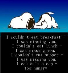 Advice from snoopy I couldn't eat or sleep missing you