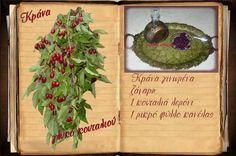 Συνταγές, αναμνήσεις, στιγμές... από το παλιό τετράδιο...: Κράνα... γλυκό κουταλιού!