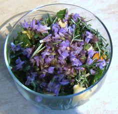 Recette de macération rapide aux cinq plantes fraîches LES INGREDIENTS : j'ai utilisé pour cette recette des plantes biologiques fraîchem...