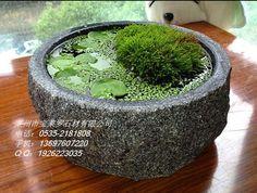 Hot_sale_japanese_bonsai_pots.jpg_350x350.jpg 350×264 pixels