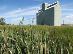 Like almost every other town on the Canadian Prairies, Trochu Alberta was once home to many grain elevators. Today, all that left is a singl...