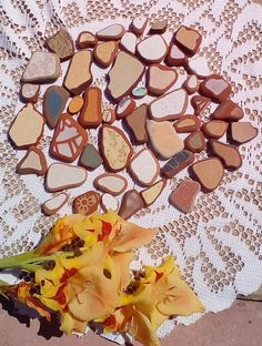 50 pieces /Italian genuine Ornamental Sea Pottery for