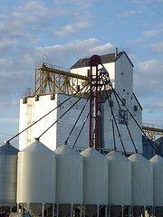Grain elevator Hartney, Manitoba